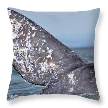 Throw Pillow featuring the photograph Powerful Fluke by Don Schwartz
