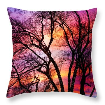 Powerful Trees Throw Pillow by James BO  Insogna