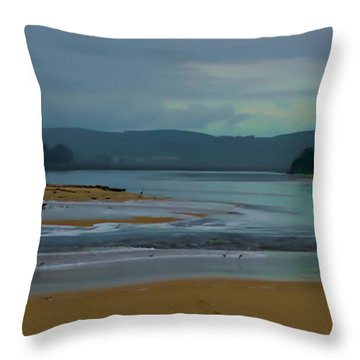 Powlett River Inlet On A Stormy Morning Throw Pillow by Blair Stuart