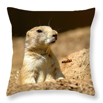 Prarie Dog Bee Alert Throw Pillow by LeeAnn McLaneGoetz McLaneGoetzStudioLLCcom