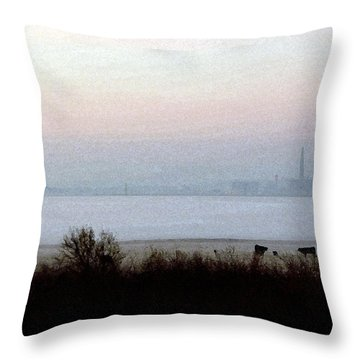 Pre-dawn Fog Throw Pillow