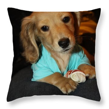 Precious Puppy Throw Pillow