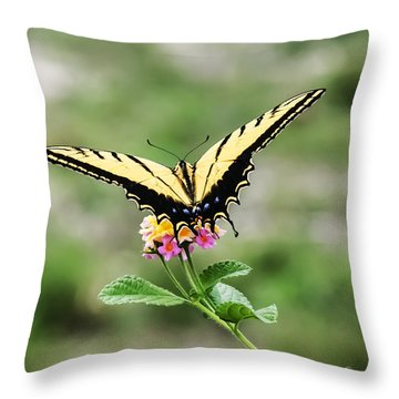 Prepare For Take Off Throw Pillow by Kelly Rader