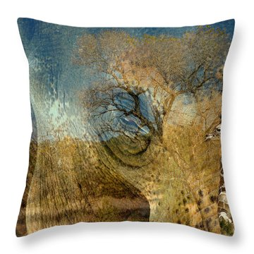 Throw Pillow featuring the photograph Preservation by Vicki Pelham