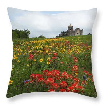 Presidio La Bahia 1 Throw Pillow