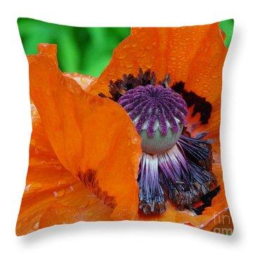 Pretentious Throw Pillow by Priscilla Richardson