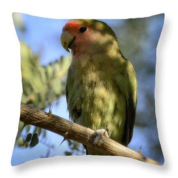 Pretty Bird Throw Pillow by Saija  Lehtonen