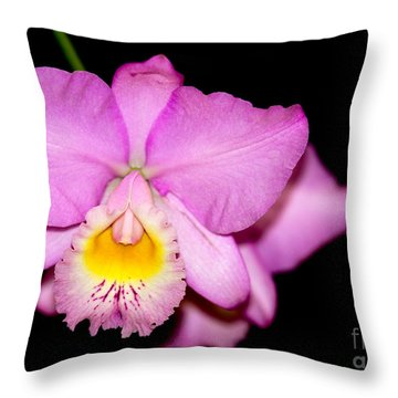 Pretty In Pink Orchid Throw Pillow by Sabrina L Ryan