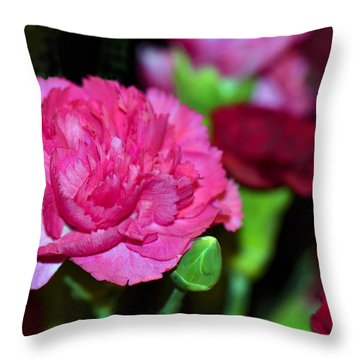 Pretty In Pink Throw Pillow by Sandi OReilly
