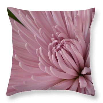 Pretty In Purple 2 Throw Pillow