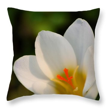 Pretty White Crocus Throw Pillow