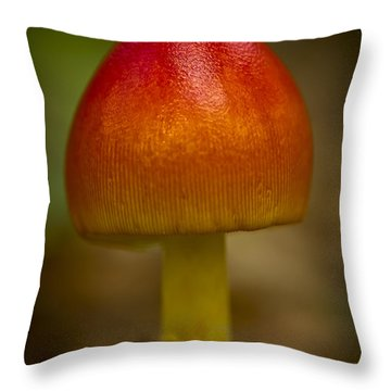 Pretty Wild Thing Throw Pillow