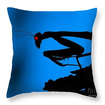 Preying On Dreams Throw Pillow