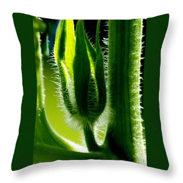 Prickly Affairs Throw Pillow by Carol F Austin
