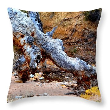 Profile Of The Dragon Throw Pillow by Diane montana Jansson