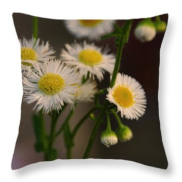 Promise Throw Pillow by Kelly Rader
