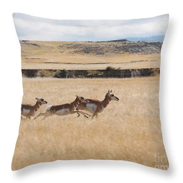 Throw Pillow featuring the photograph Pronghorn Antelopes On The Run by Art Whitton