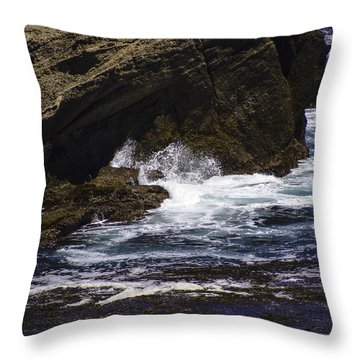 Protected From The Sea Throw Pillow by Jo-Anne Gazo-McKim