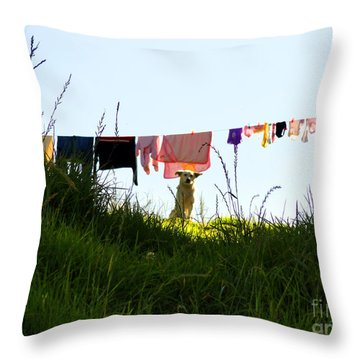 Protecting The Valuables Throw Pillow by Al Bourassa