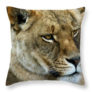 Proud Lioness Throw Pillow