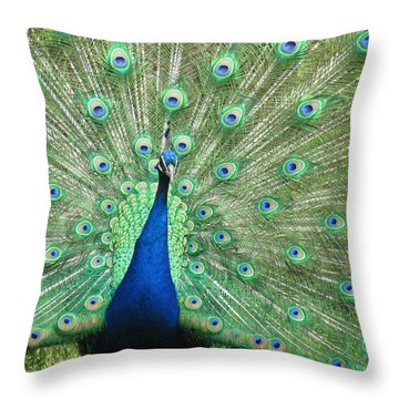 Proud Peacock Throw Pillow by Bonnie Muir