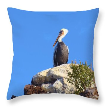 Proud Pelican Throw Pillow by Ramie Liddle