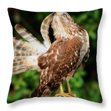 Pruning Feathers Throw Pillow