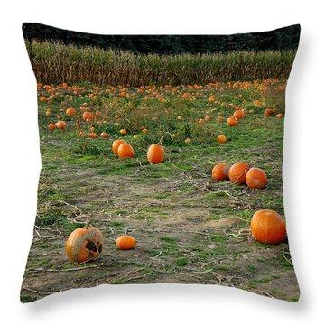 Pumpkin Patch Throw Pillow by LeeAnn McLaneGoetz McLaneGoetzStudioLLCcom