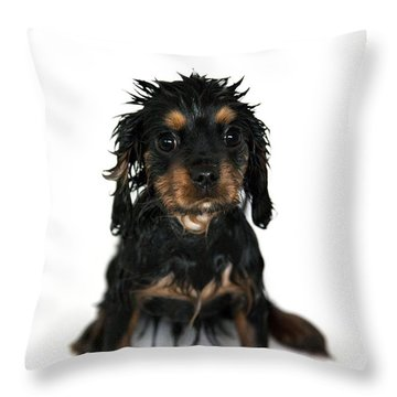 Puppy Bathtime Throw Pillow by Jane Rix