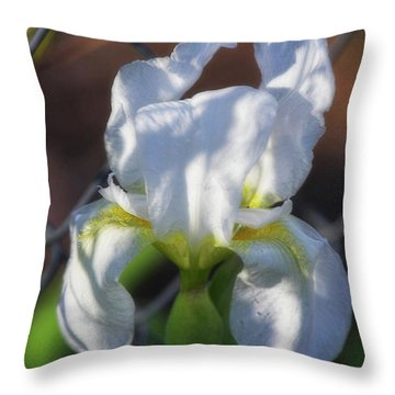 Throw Pillow featuring the photograph Puppy Dog Ears by Joan Bertucci
