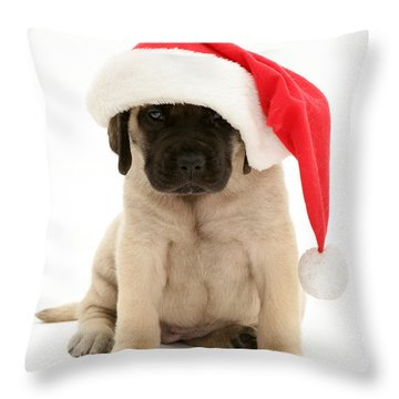 Puppy In A Santa Hat Throw Pillow by Jane Burton