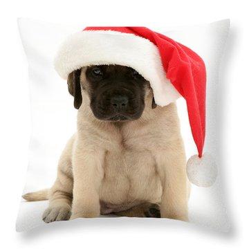 Puppy In A Santa Hat Throw Pillow by Jane Burton