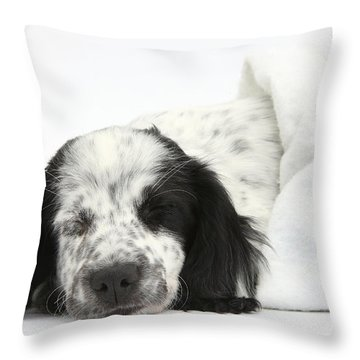 Puppy Sleeping In Christmas Hat Throw Pillow by Mark Taylor