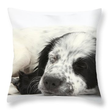 Puppy Sleeping Throw Pillow by Mark Taylor