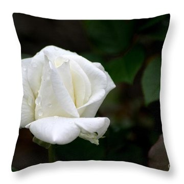 Throw Pillow featuring the photograph Pure As Snow by Living Color Photography Lorraine Lynch