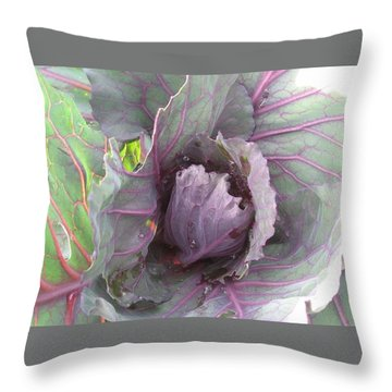 Purple Cabbage  Throw Pillow