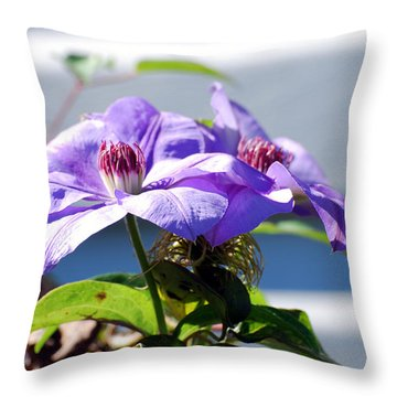 Throw Pillow featuring the photograph Purple Clematis by Linda Cox