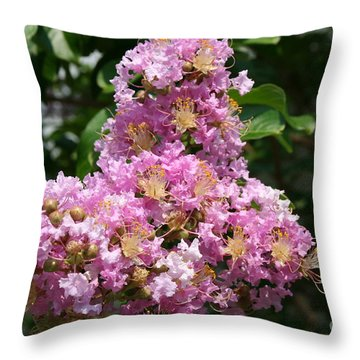 Throw Pillow featuring the photograph Purple Cross by Michael Waters