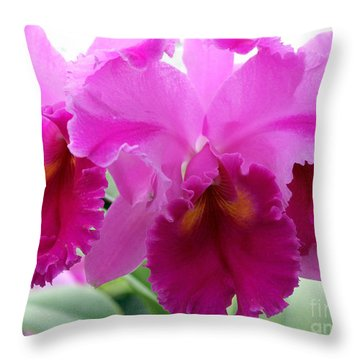 Throw Pillow featuring the photograph Purple Explosion by Debbie Hart