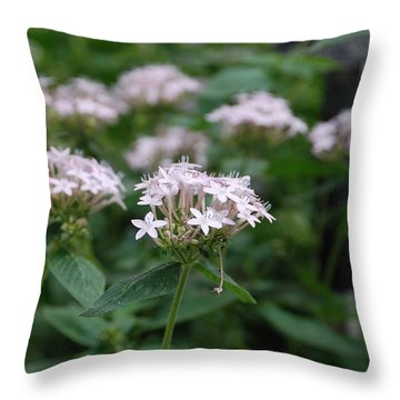 Purple Flower Throw Pillow by Jennifer Ancker