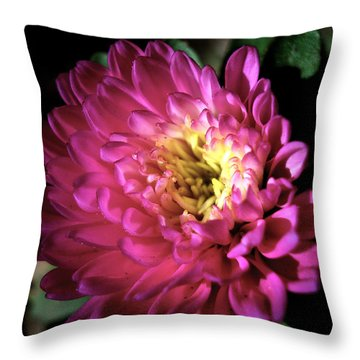 Purple Flower Throw Pillow by Sumit Mehndiratta