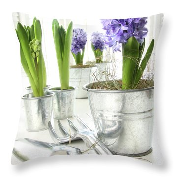 Purple Hyacinths On Table With Sun-filled Windows  Throw Pillow by Sandra Cunningham
