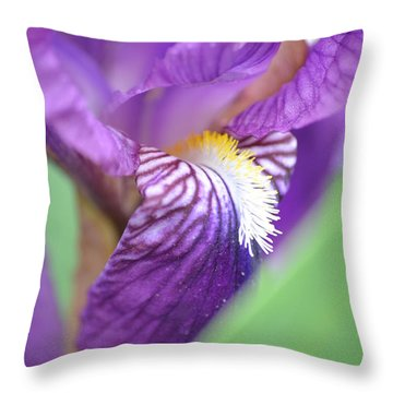 Throw Pillow featuring the photograph Purple Iris by JD Grimes