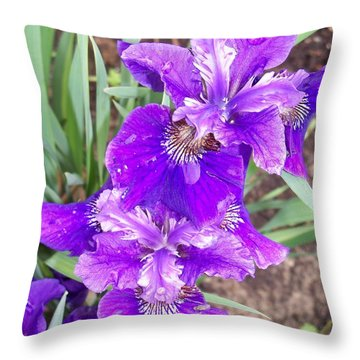 Purple Iris With Water Droplet Throw Pillow