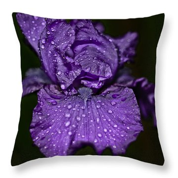 Purple Iris With Water Drops Throw Pillow