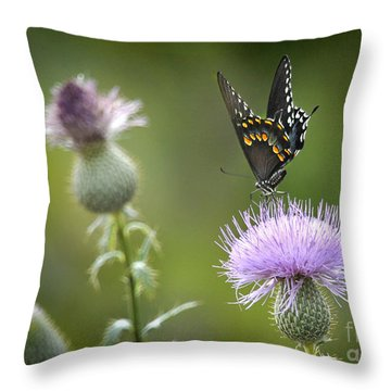 Throw Pillow featuring the photograph Purple Majesty by Nava Thompson
