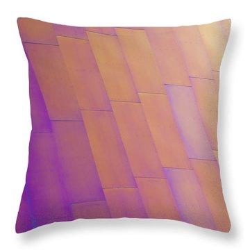 Purple Orange Two Throw Pillow by Chris Dutton