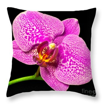 Throw Pillow featuring the photograph Purple Orchid Bloom by Michael Waters
