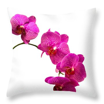 Throw Pillow featuring the photograph Purple Orchid On White by Michael Waters