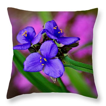 Purple Passion Throw Pillow by Marty Koch